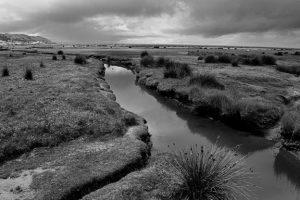 northam-burrows